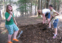 Three young people planting trees